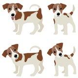 Hefboom Russell Terrier Vectorillustratie van een hond royalty-vrije illustratie