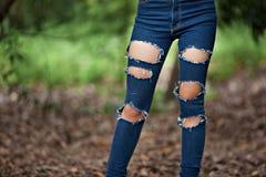 Heftige Jeans stockfotos