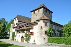 Hegi slott/Schloss Hegi Royaltyfri Fotografi