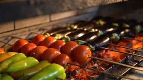 Heiße Aufsteckspindeln mit Gemüse auf Grill Auberginen, Tomaten und grüner Pfeffer wird auf Kohlen gebraten stock footage