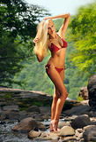 Heiße junge Frau mit perfektem dünnem Körper im Bikini Lizenzfreies Stockbild