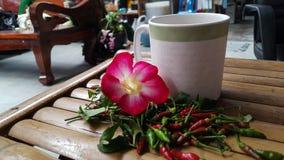 Heiße Kaffeeazaleenblume und -paprikas auf Stuhl Lizenzfreie Stockbilder