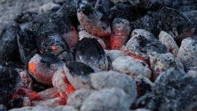 Heiße Kohle stockbild
