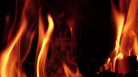 Heiße Kohlen in einem Lagerfeuer nachts in der Zeitlupe stock video footage