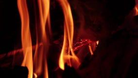 Heiße Kohlen im Lagerfeuer nachts in der Zeitlupe nahaufnahmen stock footage