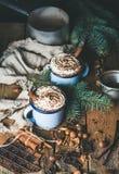 Heiße Schokolade mit Schlagsahne, Nüssen, Gewürzen und Tannenbaum verzweigt sich lizenzfreie stockbilder