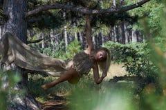 Heiße sexy Frau, die in einem Wald aufwirft stockfotos