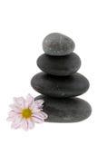 Heiße Steine mit Blume Lizenzfreies Stockfoto