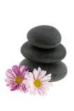 Heiße Steine mit Blumen Stockbild