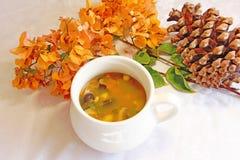 Heiße Suppe stockbilder
