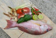 Heiße und saure Fischsuppenpaste Lizenzfreie Stockfotos