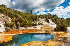 Heißer Frühling, Neuseeland Stockfotografie