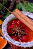 Heißer Glühwein mit Scheiben von Zitrusfrüchten, von Zimt und von Anis in einem irischen Glas verziert mit Zuckergrenze lizenzfreies stockbild
