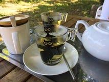 Heißer grüner Tee, grüner Tee Lizenzfreies Stockbild