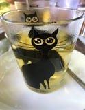 Heißer grüner Tee, grüner Tee Stockfotografie