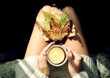 Heißer grüner Tee Lizenzfreies Stockfoto