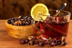 Heißer Hagebuttentee gegen Grippe Haupttiefkühlen Getrocknete Vitamine Traditionelle Volksmedizin lizenzfreies stockfoto