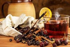Heißer Hagebuttentee gegen Grippe Haupttiefkühlen Getrocknete Vitamine Traditionelle Volksmedizin lizenzfreie stockbilder