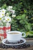 Heißer Hintergrundbaum des Kaffees Stockbilder