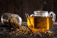 Heißer Kamillentee in einer klaren Teekanne und in den Trockenblumen Lizenzfreies Stockbild