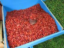 Heißer Paprika für Verkauf Lizenzfreies Stockfoto