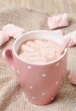 Heißer selbst gemachter Kakao Lizenzfreie Stockfotos