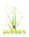 Heißer Sommerhintergrund Stockfotos