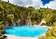Heißer thermischer Frühling, Neuseeland Stockfotos
