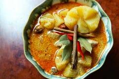 Heißer u. würziger Curry Lizenzfreies Stockbild