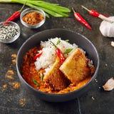 Heißer würziger knusperiger Fried Chicken Fillet mit Curry und Reis auf Dar stockfotos
