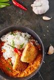Heißer würziger knusperiger Fried Chicken Fillet mit Curry und Reis auf Dar lizenzfreies stockfoto