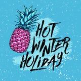 Heißer Winterurlaub der Illustration mit Ananas auf einem blauen Hintergrund Vier Schneeflocken auf weißem Hintergrund Lizenzfreie Stockfotografie