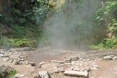 Heißes dampfiges kochendes schwefliges Wasser Stockfoto