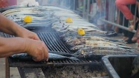 Heißes geräuchertes der Makrele Karkassen von Fischen im Grill, von dem es einen hellen Rauch gibt stock footage