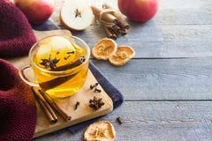 Heißes Getränk mit Apfel und Gewürzen lizenzfreies stockbild
