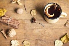 heißes Herbstgetränk lizenzfreie stockfotos