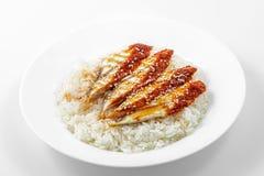 Heißes Teller unadzyu, Reis, geräucherter Aal, unagi Soße Stockfotos