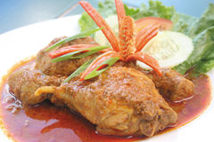 Heißes und würziges Huhncurry-Malaiianer stlye Lizenzfreies Stockfoto