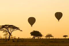 Heißluft-Ballone über dem Serengeti stockfotos