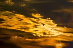 Heißluftballon im Sonnenuntergang mit drastischen Wolken und Farbe lizenzfreie stockfotos