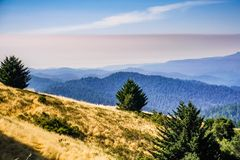 Heißer Sommertag mit grauem Smog früh morgens, Santa Cruz-Berge, Bereich Sans Francisco Bay, Kalifornien lizenzfreies stockbild