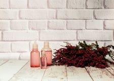 heide en tint van heidebloemen op lichte achtergrond, het concept het helen van installaties, exemplaarruimte stock foto's