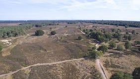 Heide in Hilversum Lizenzfreie Stockbilder