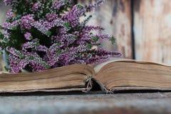 Heide op de achtergrond van oud boek Stock Foto