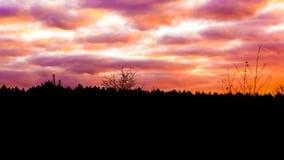 Heidelandschap bij zonsondergang met nacreous wolken, een zeldzaam effect van het de winterweer stock fotografie