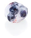 Heidelbeeren innerhalb des schmelzenden Eiswürfels Lizenzfreies Stockbild