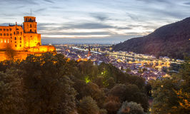 Heidelberg Castle&city Stock Image