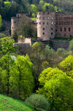 Heidelberg castle in Germany. Castle in Heidelberg, Germany,Baden-Wurttemberg Royalty Free Stock Photos