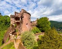 Heidelberg Castle in Spring, panorama Stock Photography