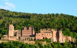 Heidelberg castle in springtime Royalty Free Stock Photo